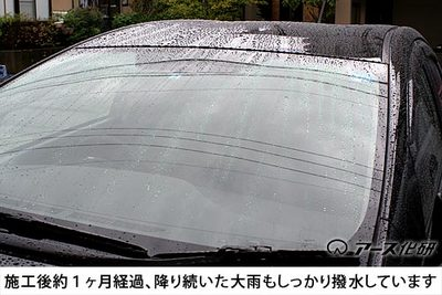 shinflow500.jpg